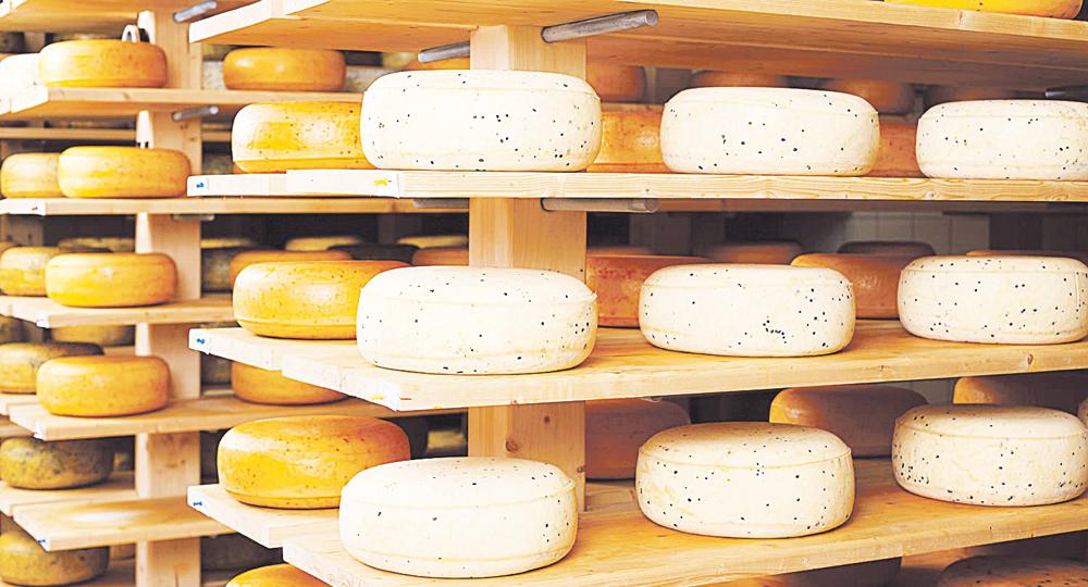Foto: www.rutadelqueso.com.ar